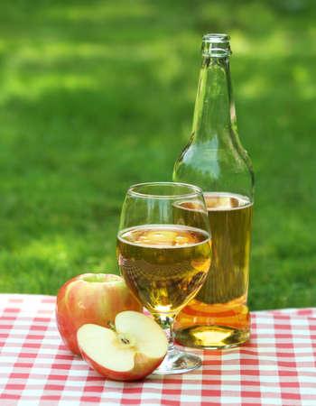 Apple cider and apples on the summer picnic Standard-Bild