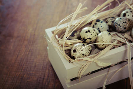 homemade style: Spotted eggs on wooden background with space for text