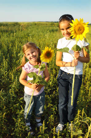 Portrait of two cute litle girls hiding behind sunflowers on sunny day photo