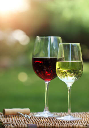Two glasses of the white and red  wine in the garden photo