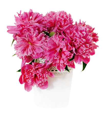 Pink peony flowers in white vase  Isolated on white photo