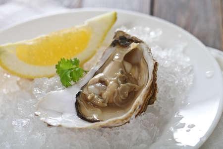 ostra: Plato de ostras frescas servidas en hielo con limón