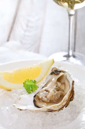 Fresh oyster platter served in ice with white wine photo