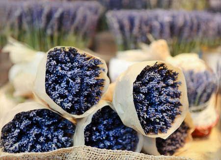 lavandula angustifolia: Bunches of lavenders, street market in Praha. Christmas time