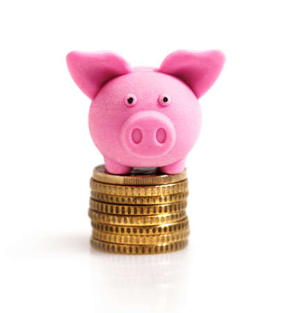 saver: Little pink pig  on coins. Isolated on white  Stock Photo