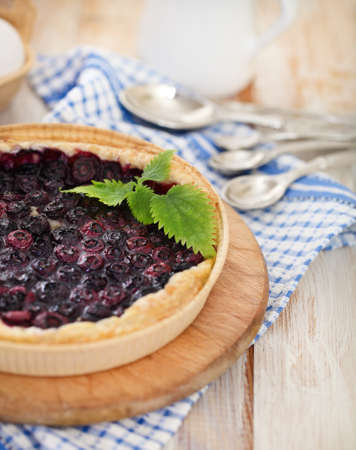 Freshly baked homemade blueberry pie with blueberries photo