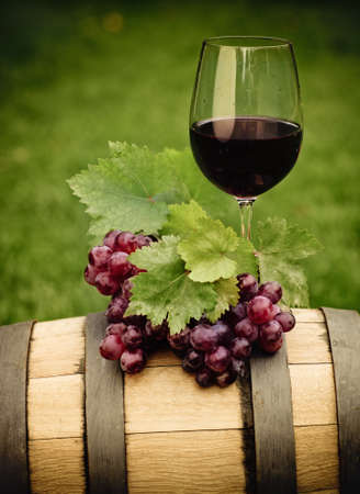 One glass of red wine and green leaves of the grape on the wine barrel. Close up photo
