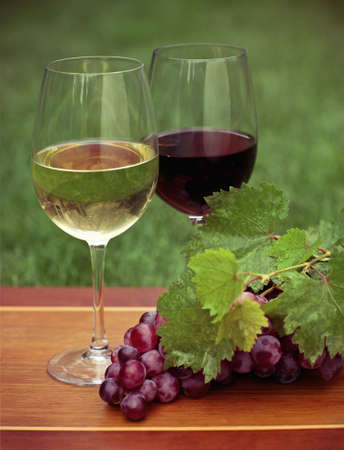 One glass of white wine and red wine and grapes with green leaves  photo