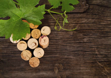 brown cork: Dated wine bottle corks on the wooden background. Close up    Stock Photo