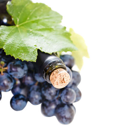 fruit of the spirit: Bottle of wine on the white background with copy space Stock Photo