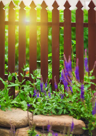 fence panel: Wooden fence over the courtyard with flowers and sun