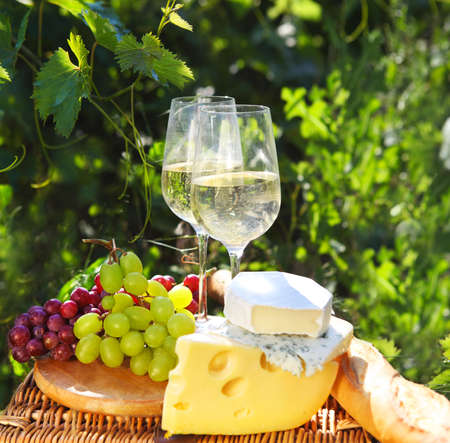 Various sorts of cheese, bread, grapes and two glasses of the white wineb In the vineyard photo