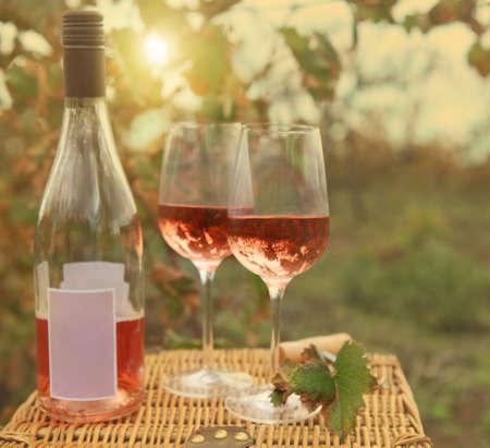 vino: Dos vasos y una botella de vino rosado en la viña del otoño. Tiempo de cosecha