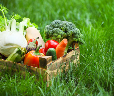 Fresh vegetables in the box on the green grass Stockfoto