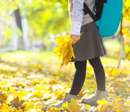 schooler: Back to school. Little schooler girl wearing school uniform and stylish blue school backpack having fun with yellow maple leaves in the autumn park