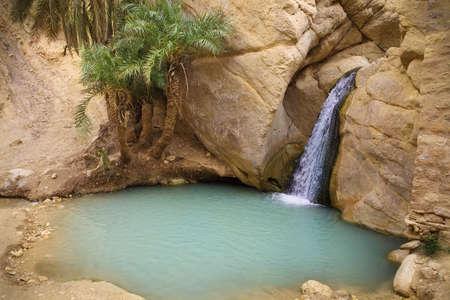 desierto del sahara: Vista del oasis de monta�a de Chebika, desierto del Sahara, T�nez, �frica