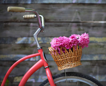 parked: Vintage bicycle with basket with peony flowers near the old wooden wall Stock Photo