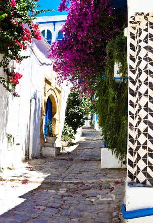 Sidi Bou Said. La Gulett, Tunisia. White and blue town photo