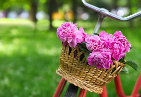 Vintage bicyclette au panier avec des fleurs de pivoine dans le parc de printemps Banque d'images