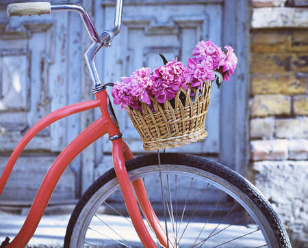 Vintage bicycle with basket with peony flowers near the old wooden door Standard-Bild
