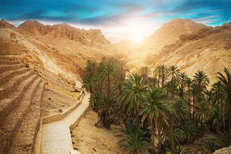 산 오아시스 Chebika, 사하라 사막, 튀니지, 아프리카보기 스톡 콘텐츠