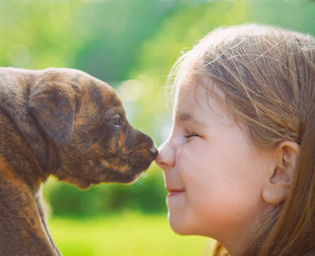 Little girl with a puppy. Nose to nose