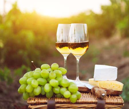 다양한 종류의 치즈, 포도 및 포도원에있는 화이트 와인 2 잔
