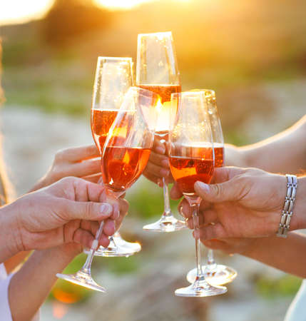 Group of friends toasting champagne sparkling wine at a relax party celebration gathering Banco de Imagens - 51168608