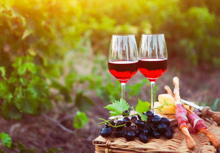 Two glasses of rose wine with bread, meat, grape and cheese on the vineyard background Archivio Fotografico