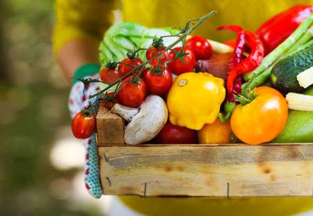 corbeille de fruits: La Femme aux gants avec des légumes frais dans la boîte dans ses mains. Fermer