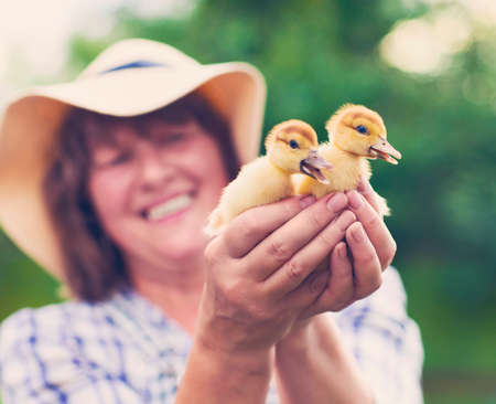Middle age caucasian woman with yellow duckling outdoors at green nature background photo