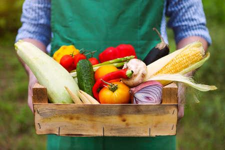 food basket: Farmer man holding wooden box filled fresh vegetables. Close up Stock Photo