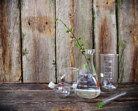 Green plants in laboratory equipment on rustic wooden background