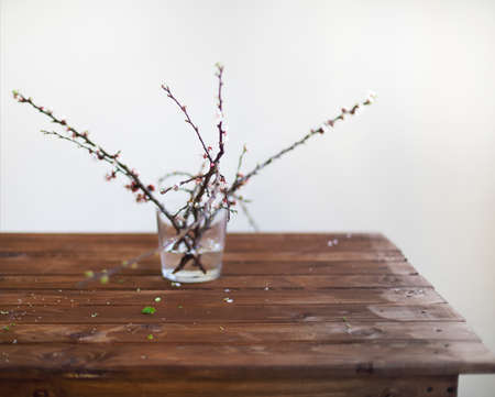 Sprig blossoming branch on wooden table and empty space for text. Copy space. Spring time