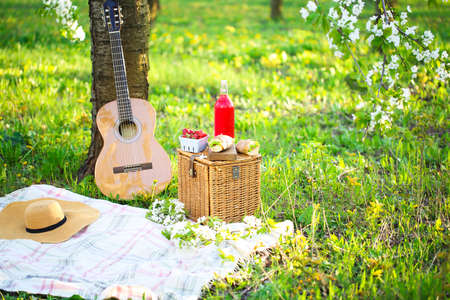 Guitar, basket, sandwiches, plaid and juice in a blossoming garden. Vintage tender background. Romance, love, date Foto de archivo