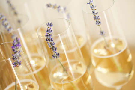Glasses of champagne decorated with lavender on blurred background