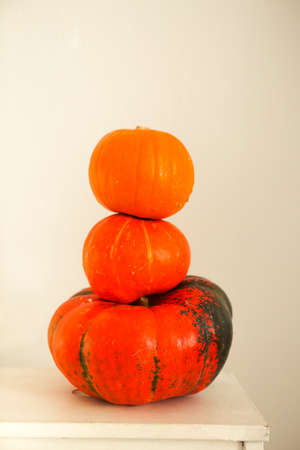 Three pumpkins on a light background, the pumpkins vegetables on a white background