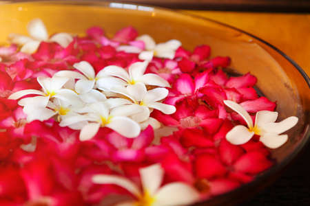 Closeup aromatic red and white flowers floating in bowl with water during spa session in salon