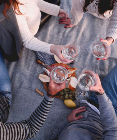 From above cheerful adult women and men in casual clothes toasting with wineglasses resting together on plaid on shore and having picnic in autumn