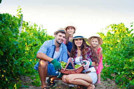Cheerful young family in casual clothes and hats with wicked basket full of green and black grape looking at camera while spending summer day on grape farm 版權商用圖片