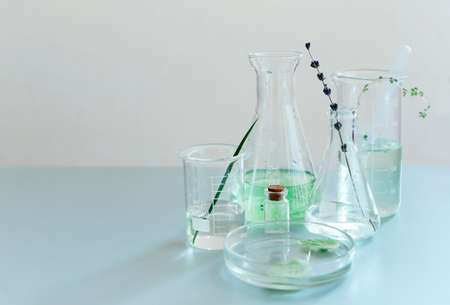 Assorted glass bottles and flasks arranged with green plants on table in modern lab