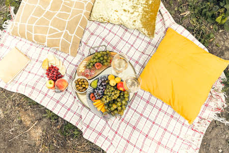 Pair of glasses with wine placed near tables with various fresh ripe fruits on blanket with cushions during romantic picnic in garden 版權商用圖片
