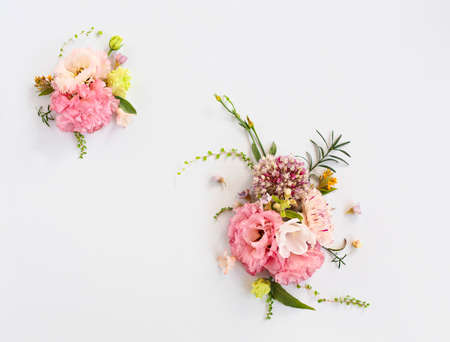 Top view of organic fresh flowers arranged in beautiful compositions on white background 版權商用圖片