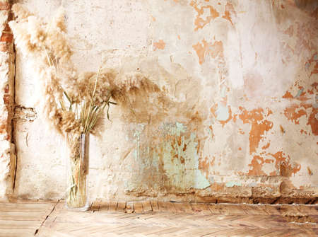 Bunch of soft fluffy twigs placed in glass vase against crumbling concrete wall
