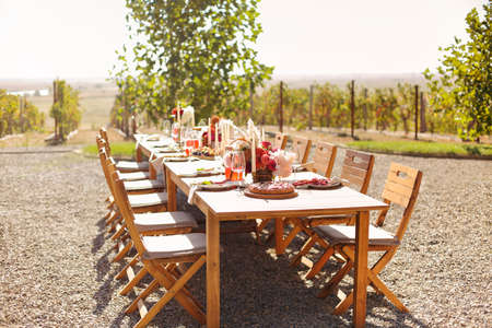 Empty wineglass placed near board with fruits on banquet table on sunny summer day Foto de archivo