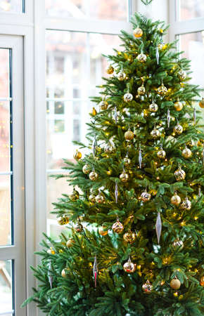Green conifer tree decorated with golden baubles and located near window on Christmas Day at home