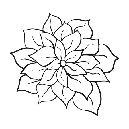 flower with delicate light contour on a white background Illustration