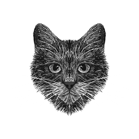 The cat is spotty. Striped. Black and white sketch.