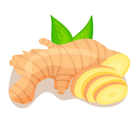 Vector icon in flat style. Ginger. Fragrant seasoning. Fresh root vegetables, sprinkling seasoning, flower. Natural and healthy food. For strengthening immunity. For your design. 矢量图像