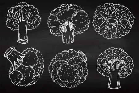Broccoli in a modern grunge style. Hand drawing. Circuit. Healthy diet. Slimming. Chalkboard icon. For your design 免版税图像